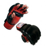 MMA bag glove type
