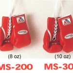 winning_gloves
