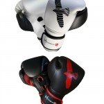 hayabusa-mma-sparring-gloves
