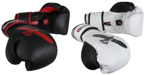 Hayabusa Sparring Gloves