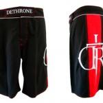 cain-velasquez-shorts