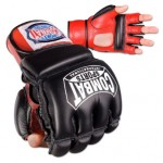 combat-sports-mma-bag-gloves