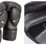 everlast-protex-2-mma-bag-gloves