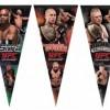 ufc fighter pennants