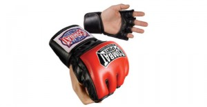 Combat Sports Traditional Fight Gloves
